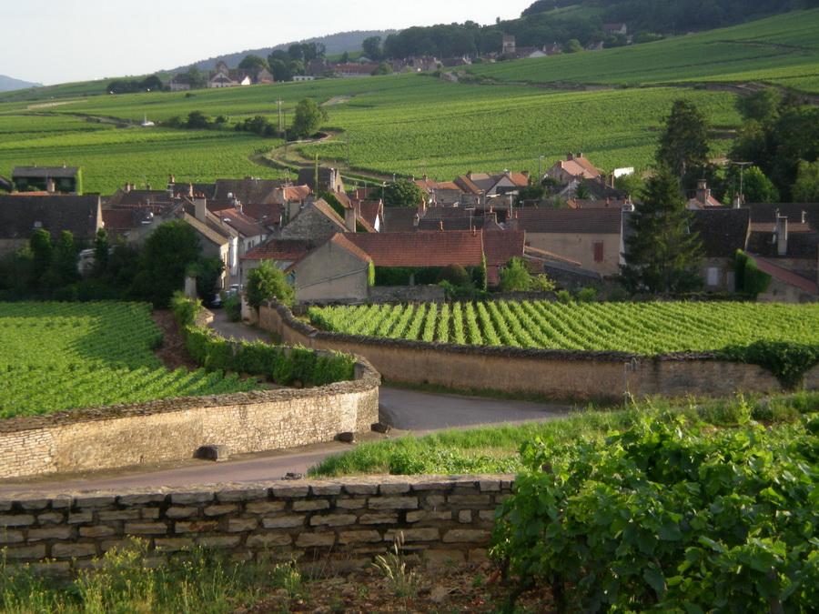 Винодельческие традиции Франции