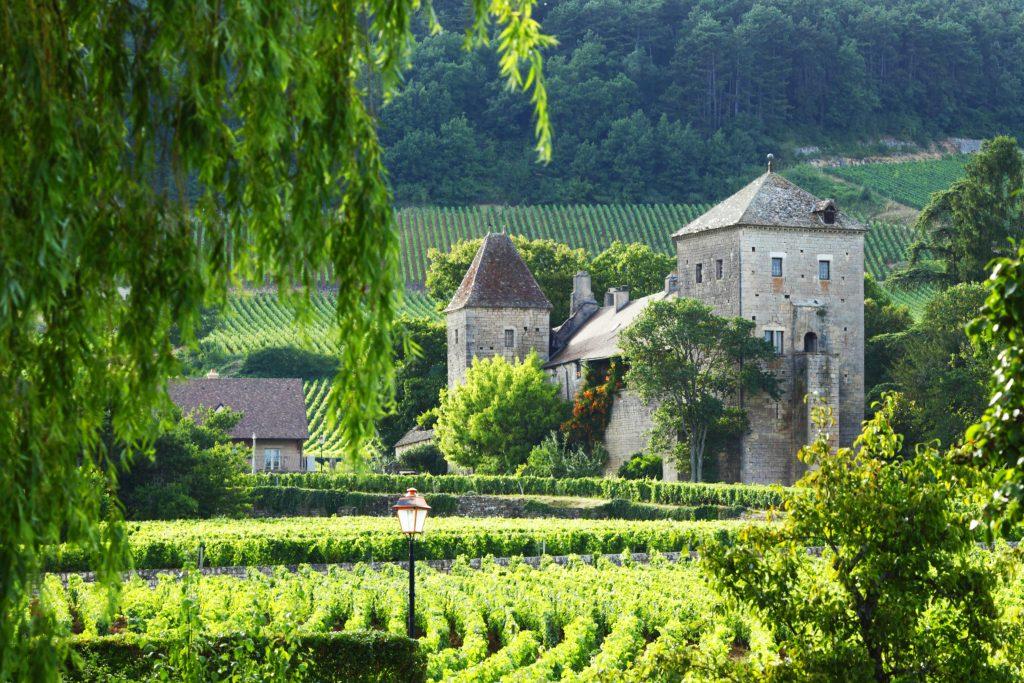 Вино для француза