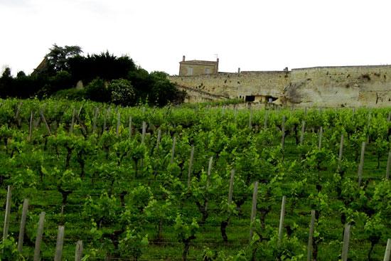 Бордо: старейший винодельческий регион Франции