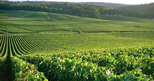 Гасконь – нова точка на туристичній мапі Франції